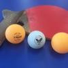 卓球療法は、なぜ機能訓練に向いているか。その7〜障害・体力・年齢に応じた方法・用具が多様。