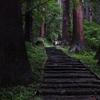 羽黒山の階段と