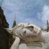 タイの世界遺産アユタヤ観光|行き方とゾウ乗り体験を紹介
