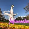 太陽の塔 内部公開 内覧 見学 万博記念公園 コスモスフェスタ 行きました。大阪万博 その2        大阪 Osaka 2025日本万国博覧会