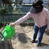 菜園プロジェクト新たな作物を植えました