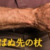 """""""コロ"""" ばぬ先の杖 ~情報は力なり~"""