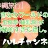 【沖縄旅行】おきなわワールドの玉泉洞(鍾乳洞)が神秘的すぎた話し。