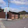 徳仙の滝のクリハランとヌカボシクリハラン