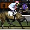 プリモ嬢&神尾香澄騎手=9着。でも積極的騎乗で楽しめました!