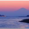 江の島に行ってきた。