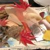 2019年11月 京都リッツカールトン・宿泊記 レストラン(水輝天ぷらランチ)を紹介します。