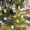 原村イルミネーションイベント2010 点灯式に参加して来ました!