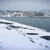 小樽・南防波堤でアイナメを狙う