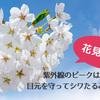 【花見注意】紫外線のピークは春!目元を守って目の下のシワたるみ対策