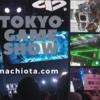 《東京ゲームショウはこんなんです‼》何があるの?楽しみ方や見どころを探索してきました‼