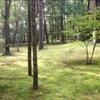 軽井沢 初夏から夏の別荘 苔むす庭の風景が忘れられない