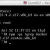 RHEL7,CentOS7で最新のDockerを使う