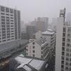クアトロでも走れない 仙台大雪