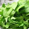 冬の鍋料理では野菜を中心的な具材として使用