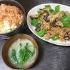 豚味噌なす炒め、白菜漬け、味噌汁