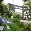 愛知県護国神社 紫陽花と茅の輪くぐり