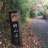 箱根、湖尻から九頭龍神社までの神山通りのウォーキング