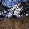 ネズミ塚からの眺め、東根工業団地と大森山