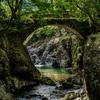 大分県耶馬渓の魔林峡はおすすめ撮影スポット