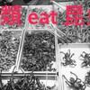 【虫を食べる!】昆虫食の研究とビジネス・将来に向けた投資の課題など