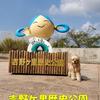 【わんこと旅】  吉野ヶ里歴史公園 ≪佐賀県≫