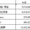 ただの全資産状況の報告(H31年2月)30万円以上の黒字になりました。リスク資産をもう少し増やすことに決めましたの件