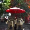 【東京】浅草神社の狛犬たち - 良縁や恋愛成就にご利益のある夫婦狛犬など