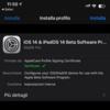iOS14の構成プロファイルが一時的にダウンロード可能になっていた??
