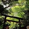 #京都 #嵐山 #野宮神社 by ysm0216 http://ift.tt/1B1Q271