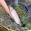 縦釣りシーズン到来!!誰でも簡単に始められる縦釣りタックルと釣り方を紹介♪♪
