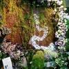 ≪本店3階≫フラワーブティック芳井  のりえ氏による Green wall - Style