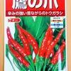 自家製ラー油を作るために「トウガラシ」を水耕栽培します。発芽するまでは電気毛布で保温です