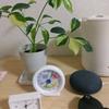 RS-WFIREX3を買ってGoogle Home miniで家電を操作してみた!