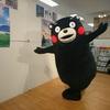 くまモン イトーヨーカドー武蔵小杉駅前店に出没