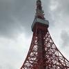8月23日(金)『曇り空の東京タワー』です🗼⛅