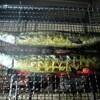 おじいちゃんの秋刀魚の炭火焼き