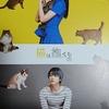 【映画 猫は抱くもの】感想。沢尻エリカが変わらずかわいい。