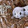 モモンガがかわいい。可愛いのだよ!『モモンガだモン!~北の森からのメッセージ~』の紹介