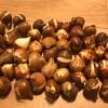 【チューリップ】植え付けの時に球根の殻は剥くべき?