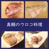 家庭料理で真鯛のウロコを食べる価値があるか?試してみた。