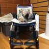 介護保険を使ってついに車椅子をレンタルしました