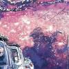 「天気の子」を見る前に、新海誠の最高傑作「秒速五センチメートル」を君は見たか?