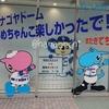 野球観戦 中日ドラゴンズvs阪神タイガース2019.7.16*