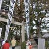 中津川西宮神社【八百万に神頼み2】