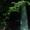 草木湖に隠れた不動滝へ