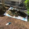 ♯2 ウッドデッキでお庭を快適に〜芝生を剥いだあとは...。