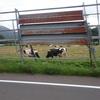 楽しめるのか?!北海道ツーリング その49〜テントの場所へ到着〜(8月9日)