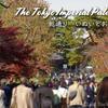 【紅葉情報】皇居乾通り一般公開 / Imperial Palace