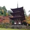 湖東三山:西明寺,紅葉真っ盛りの古刹で国宝2棟を味わう。